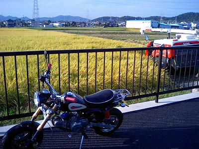 k-20111016 071.jpg
