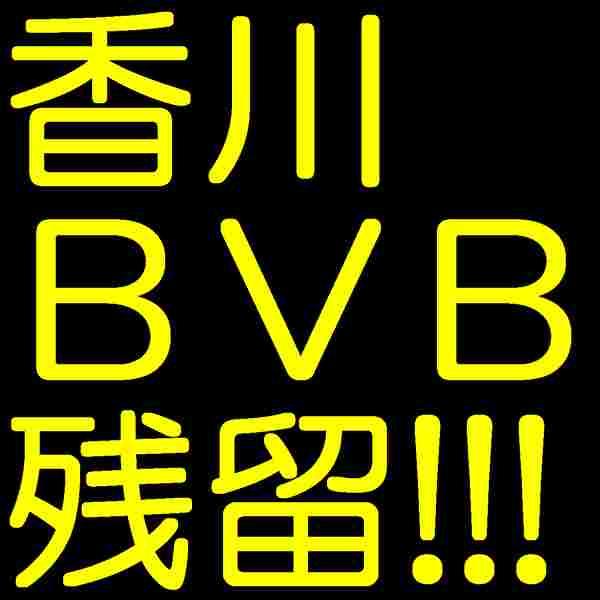 2017-bvb-3.jpg