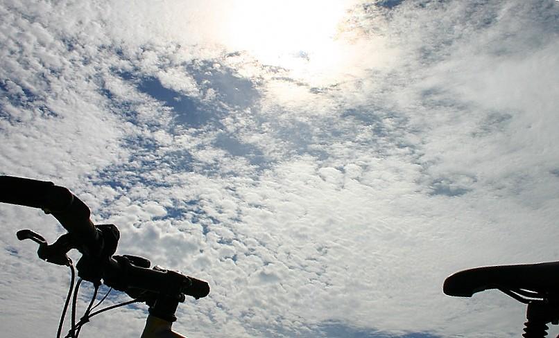 s-2008-1012 009.jpg