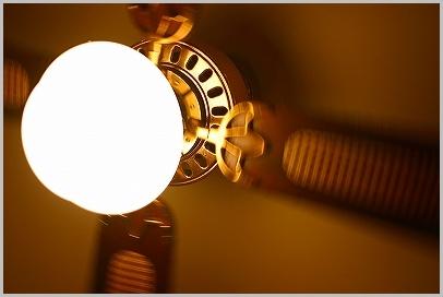 s-20100321 016.jpg